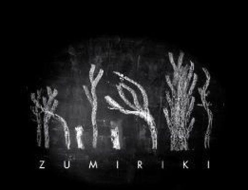 'Zumiriki' eta Oskar Alegria, Gipuzkoatik biran