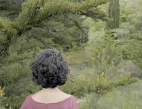 XULIA | Ainhoa Gutierrez del Pozo